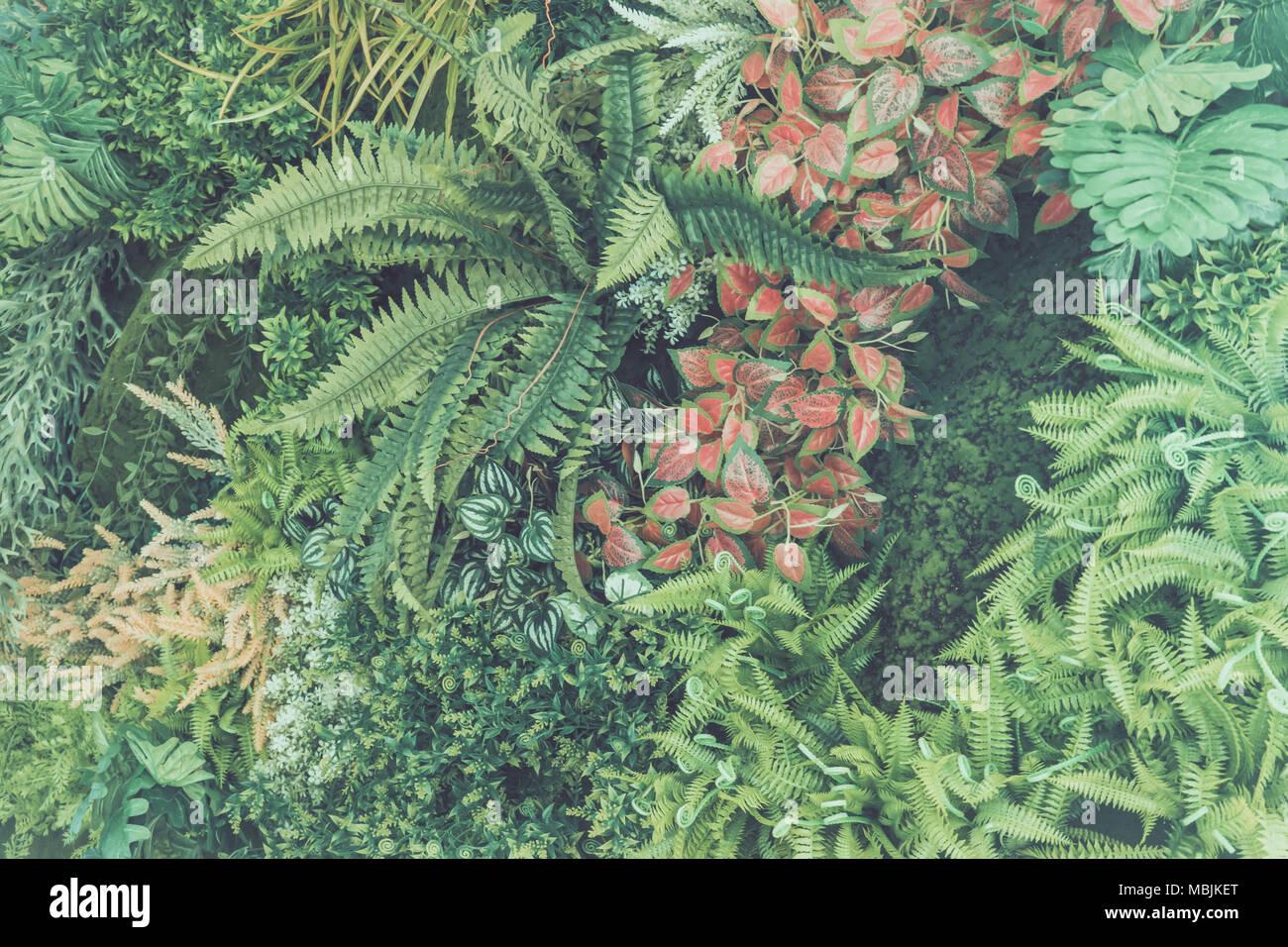 Grünes Blatt auf Hintergrund Stockfoto