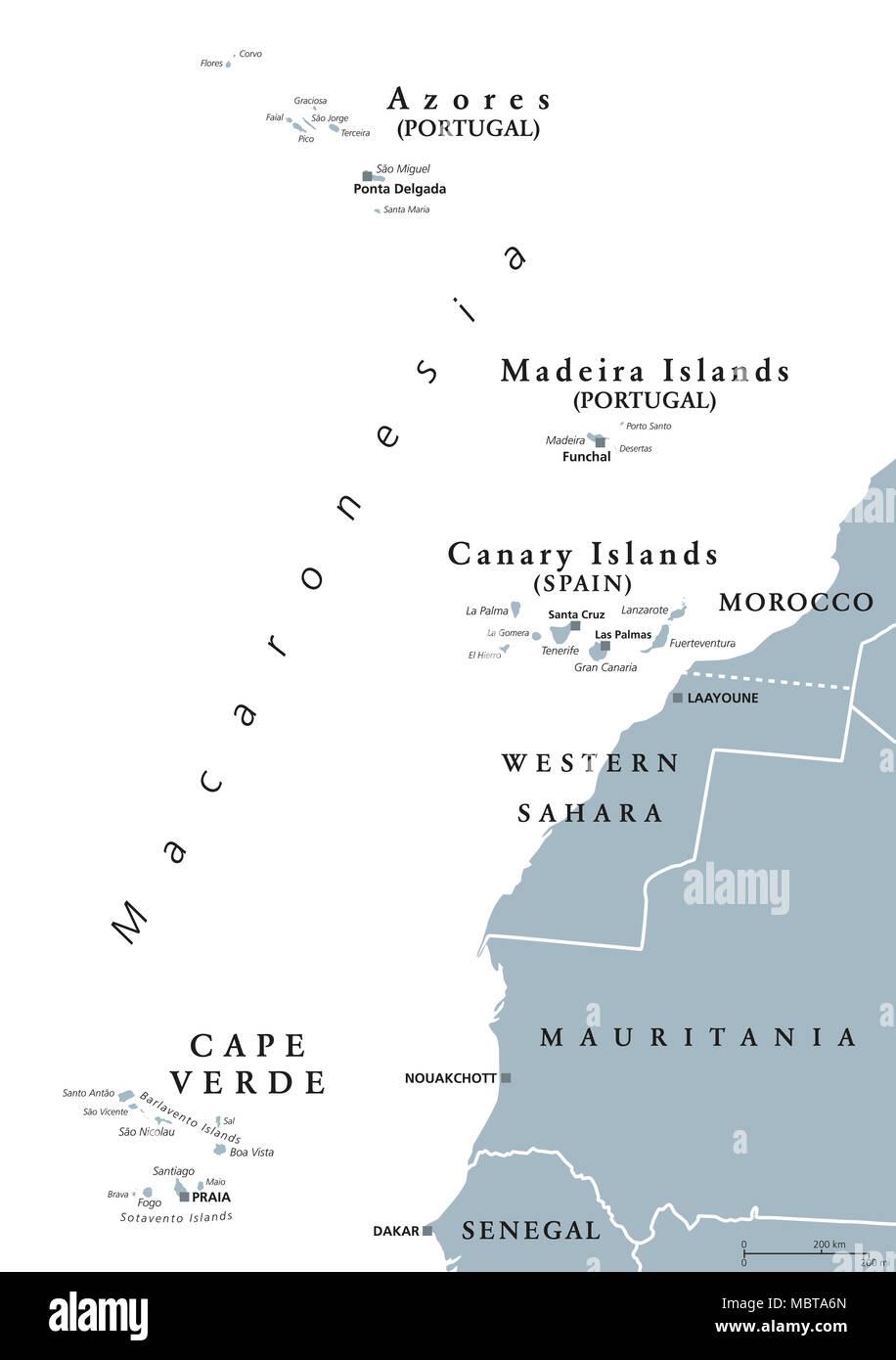 Makaronesien politische Karte. Azoren, Kap Verde, Madeira, die Kanarischen Inseln. Sammlung von Inselgruppen im Atlantik vor der Küste von Afrika. Stockbild