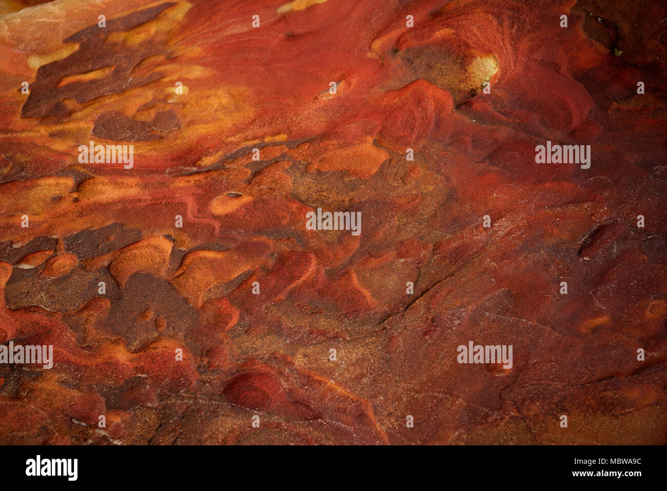 St Francis Bay Stockfotos & St Francis Bay Bilder - Alamy