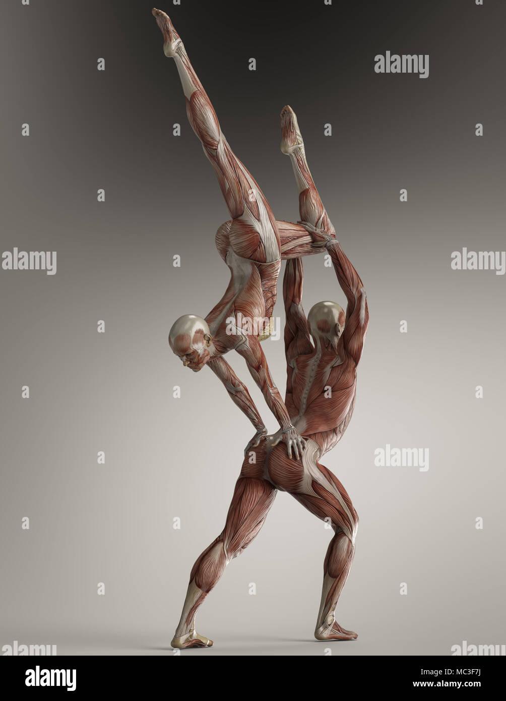 Paare yoga Pose mit männlichen und weiblichen zeigen ihre Muskel ...