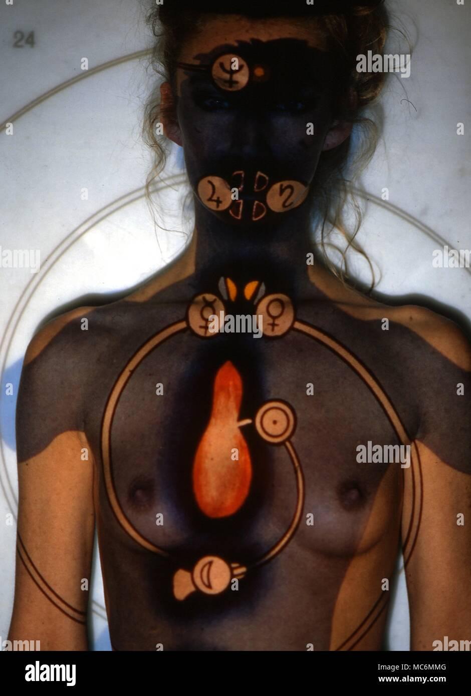 Großzügig Was Teil Des Endokrinen Systems Ist Bilder - Menschliche ...
