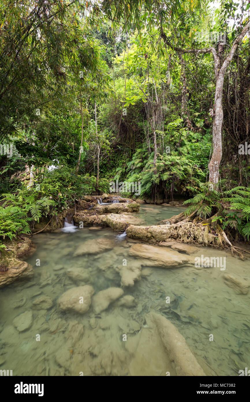 Anzeigen von seichten Teichen und die üppigen Bäume und Pflanzen neben dem khoun Moung Keo Wasserfall in der Nähe von Luang Prabang in Laos. Stockbild