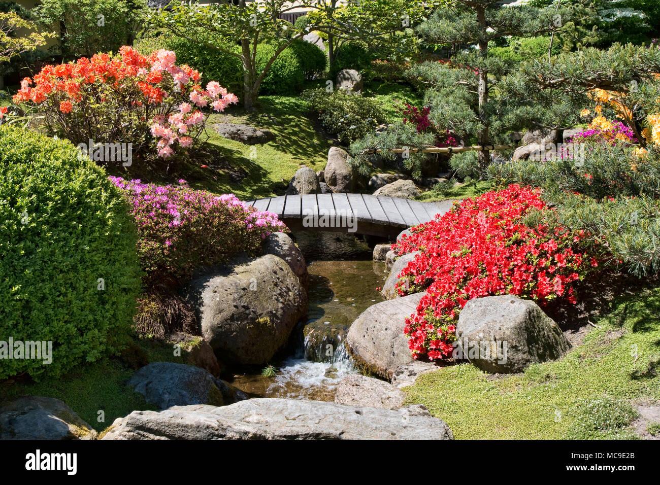 Kleiner Bach mit einer Brücke, die in einem japanischen Garten ...