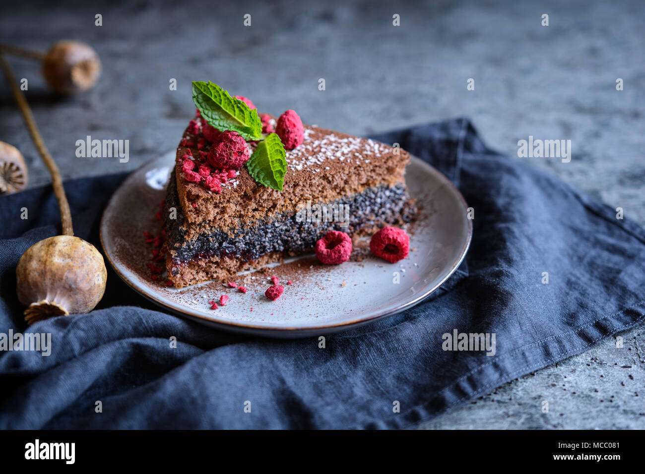 Eine Scheibe Von Kakao Kuchen Mit Mohn Und Kokos Fullung Mit Freeze