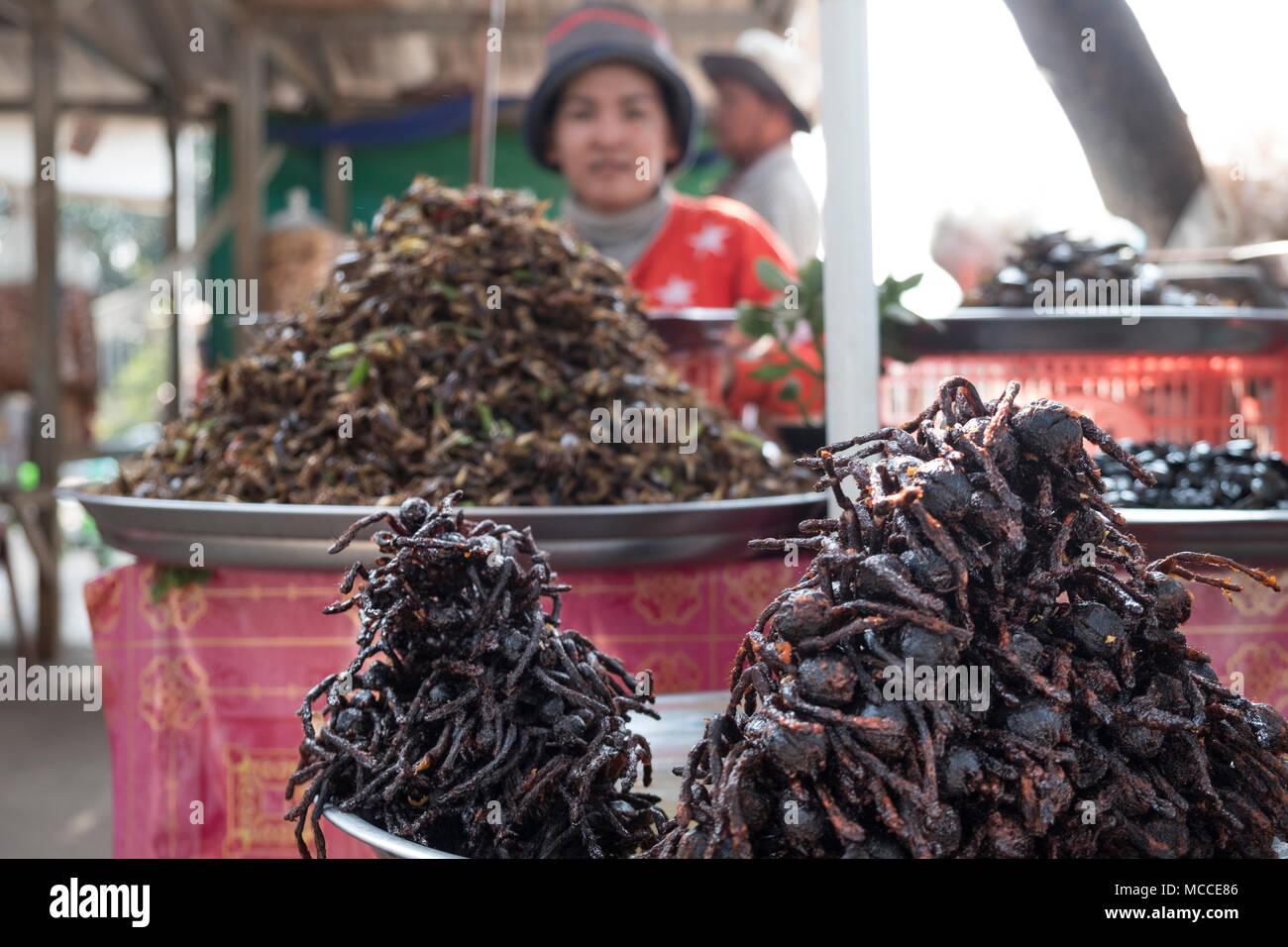 Gebratene spinnen für Verkauf an den Ständen am Straßenrand in Kambodscha Stockbild