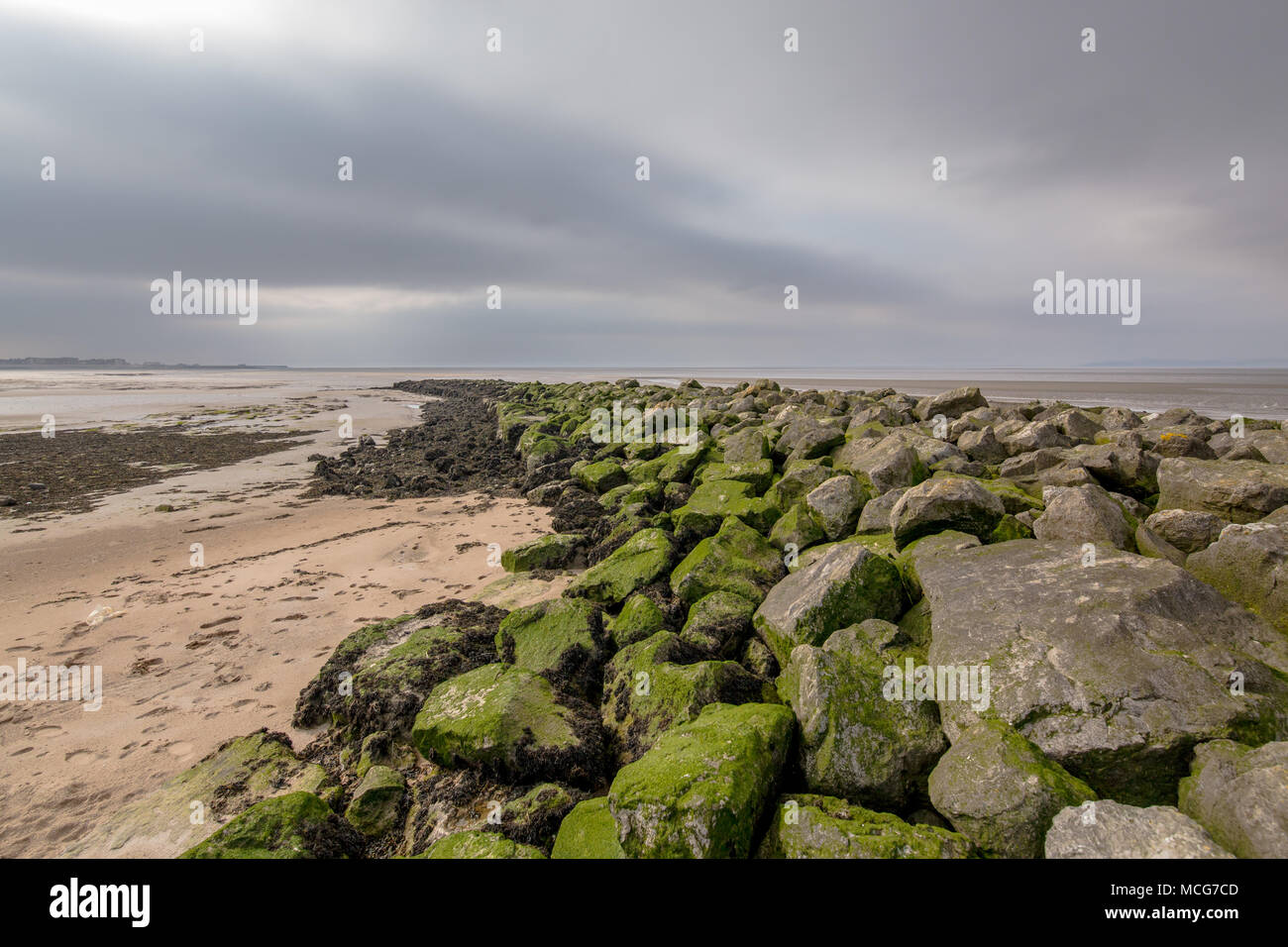 Rocky Moos bedeckt Wellenbrecher am Strand von Morecambe, England, UK. Am 11. April 2018 berücksichtigt. Stockbild