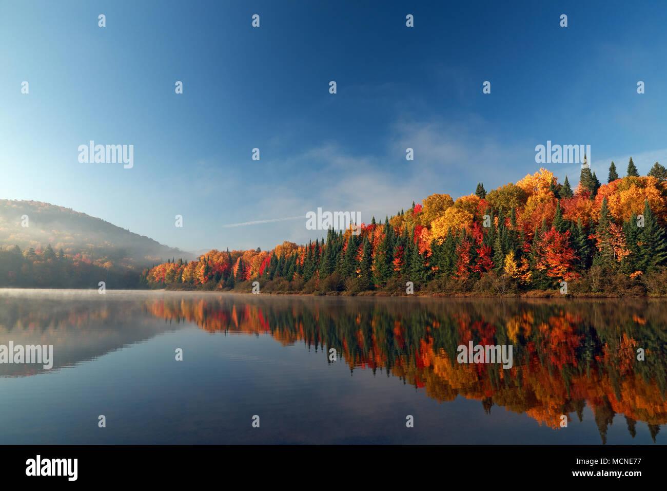 Sunrise Herbst Wald Im Wasser Spiegelt Nationalpark Mont Tremblant