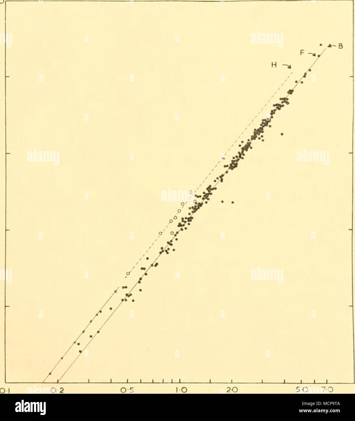 . Länge in Meter Text-Bild. 13. Grundstück gegen fötales Gewicht Länge für 234 Blau, Fin und sei Wale (schwarze Kreise), neun Buckelwale (weiße Kreise) und 93 Schweinswale (Kreuze = monatliche Mittelwerte). Regressionsgeraden wurden eingebaut, die von Auge und der neonatalen Werte für Blau-, Finn- und Buckelwale sind angegeben. In den letzten 5 Monaten der Schwangerschaft der Blauwal Fötus wächst in der Länge von 1-3 bis 7-0 m., entsprechende zu einer Zunahme von Gewicht von 2480 kg. (Von 20 bis 2500 kg.) oder 2-44 Tonnen. In den letzten beiden Monaten der Schwangerschaft die durchschnittliche Gewichtszunahme ist über 2 Tonnen (420-2500 Stockbild