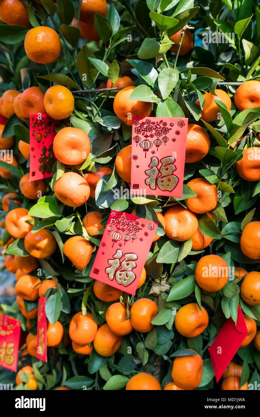 Frühlingsfest Chinesisches Neujahr roten Umschlag Dekoration auf ...
