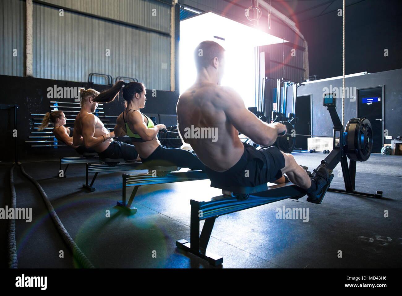 Gruppe von Menschen trainieren im Fitnessraum, Rudergeräte, Rückansicht Stockfoto