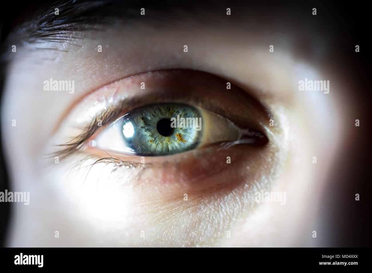 Großartig Iris Auge Anatomie Fotos - Anatomie Von Menschlichen ...