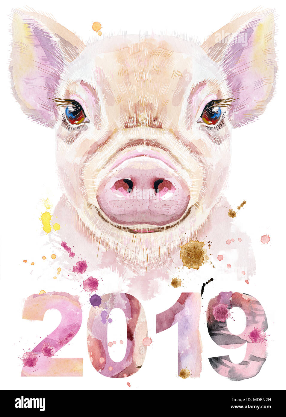 2019 New Year Card Pig Stockfotos & 2019 New Year Card Pig Bilder ...