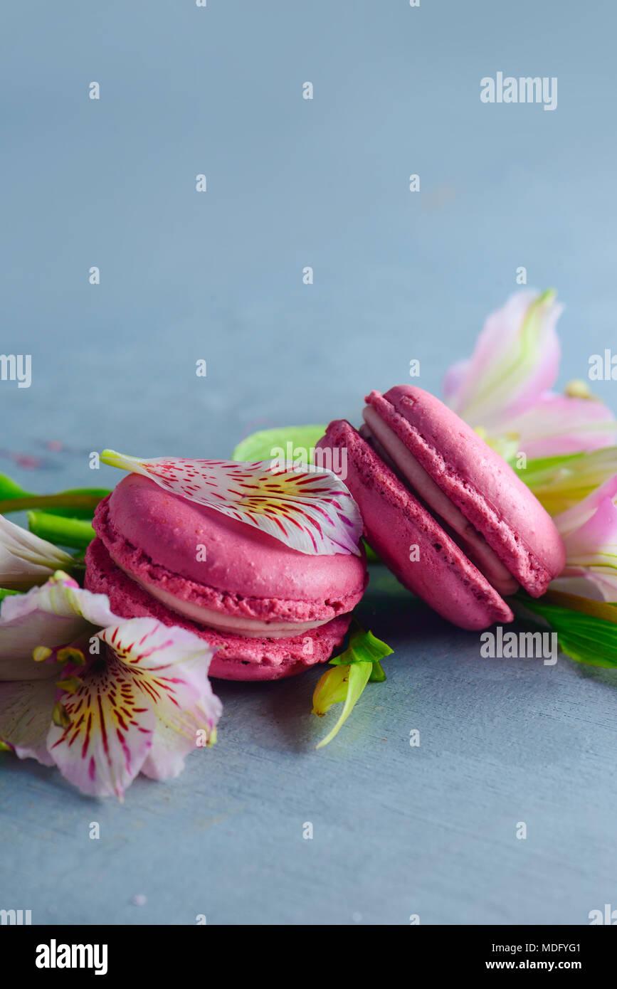 Rosa Makronen mit rosa und weißen alstroemeria Blumen geschmückt. Romantischen französischen Dessert auf Stein Hintergrund mit kopieren. Stockbild