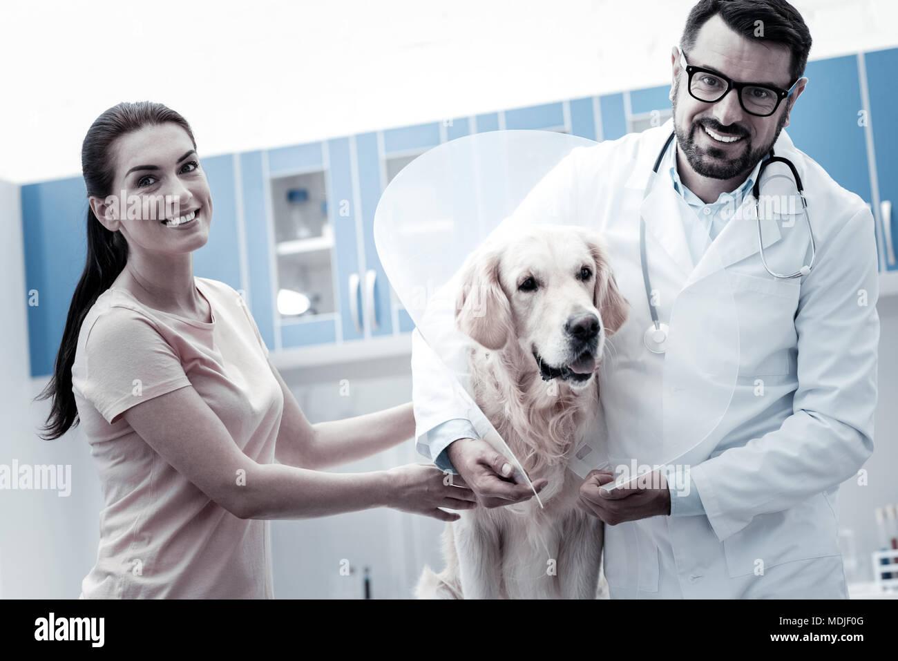 Freudige positiver Mann e Kragen auf den Hund setzen Stockbild