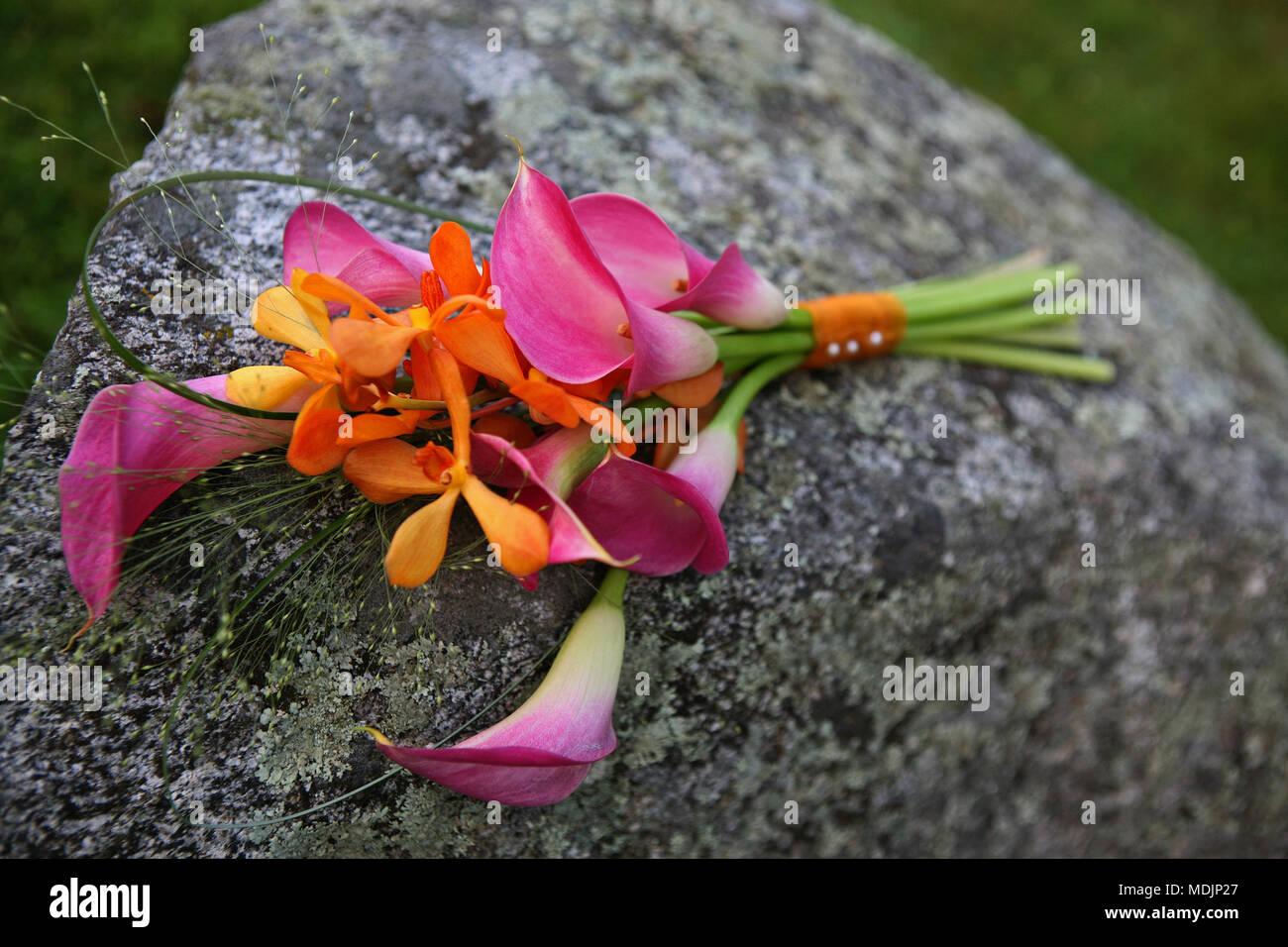 Schöne rosa Lilien Festlegung auf einen großen Stein Stockbild