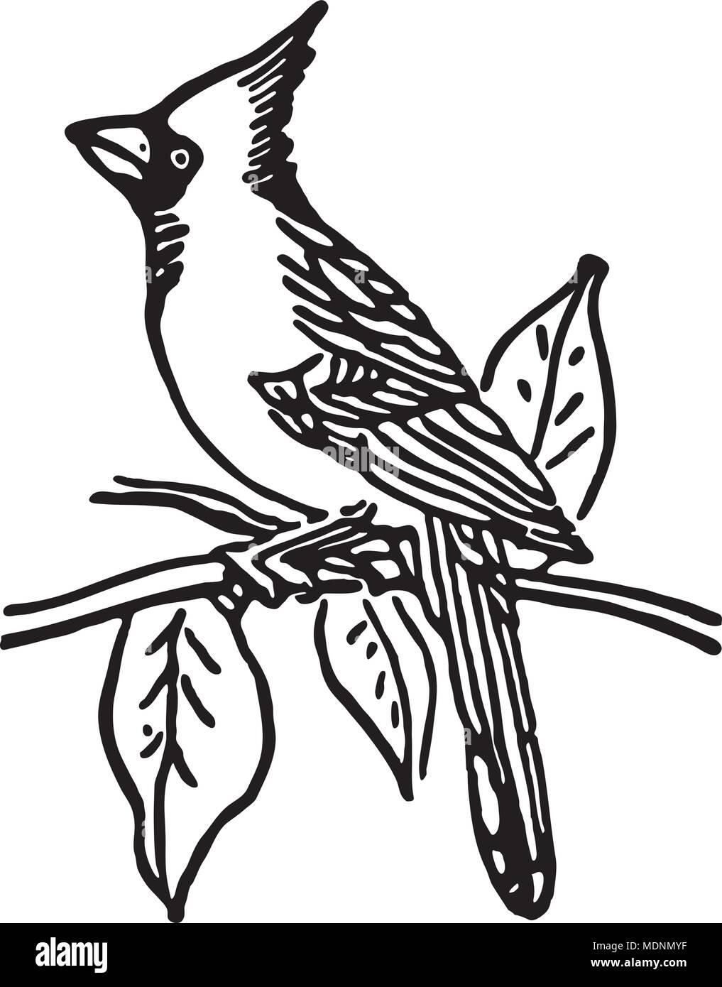 Cardinal Clip Art Stockfotos & Cardinal Clip Art Bilder - Alamy