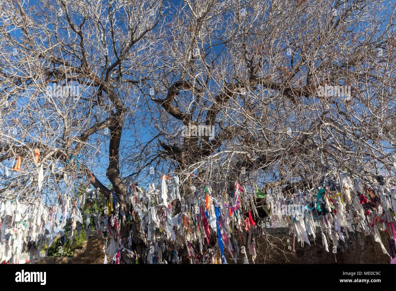 Agia Solomoni christliche Katakombe mit Krankheit kurieren farbige Tücher auf der Eiche Baum, Kato Paphos, Paphos, Zypern, Europa Stockbild