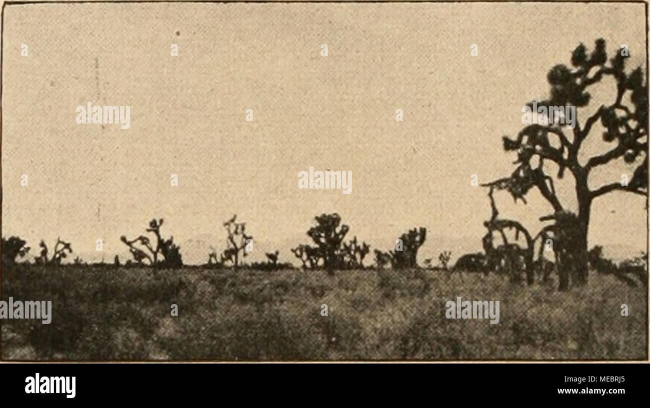 Was Ist Das Stockfotos & Was Ist Das Bilder - Seite 26 - Alamy