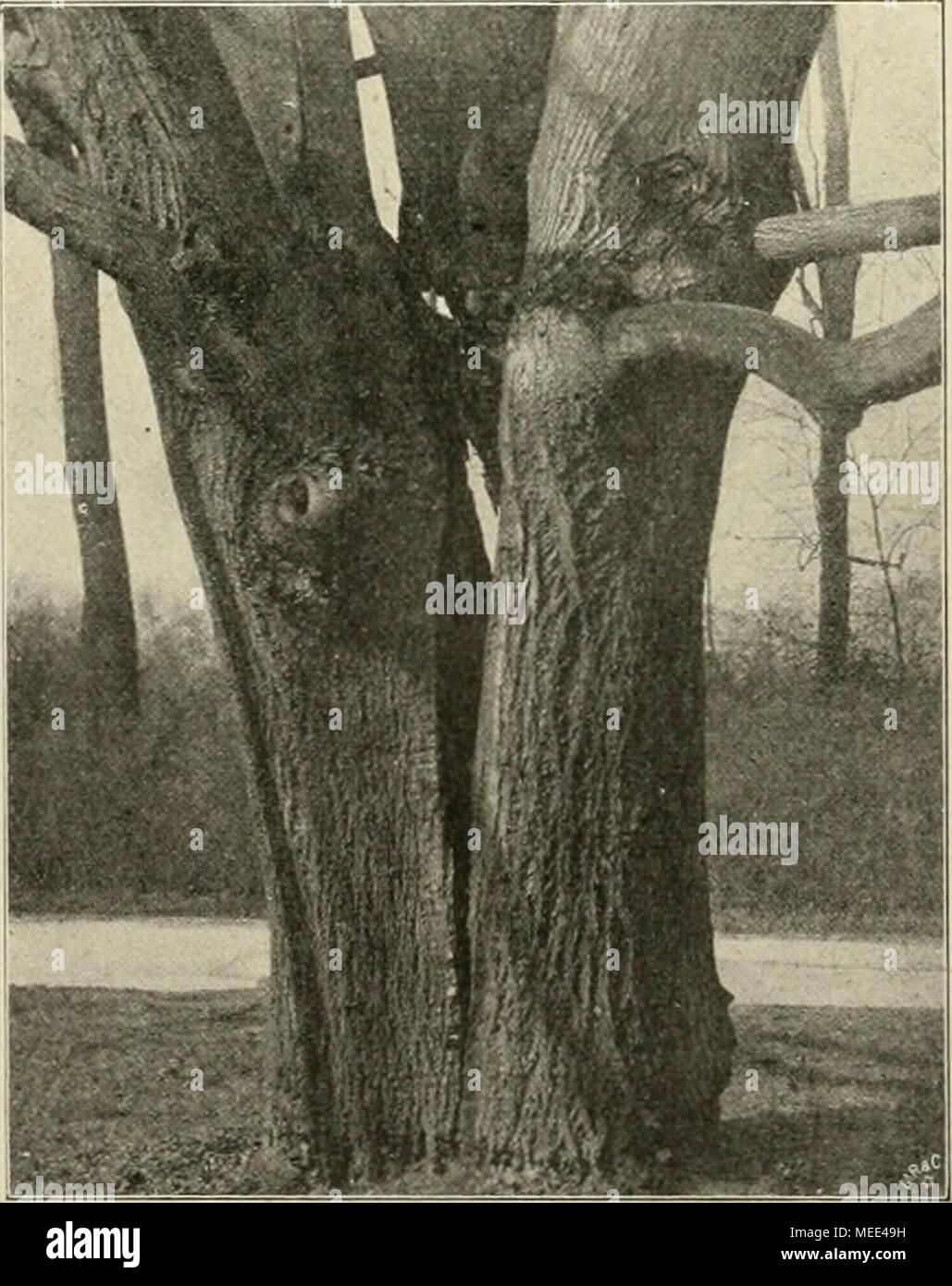 Das Durch Stockfotos & Das Durch Bilder - Seite 10 - Alamy