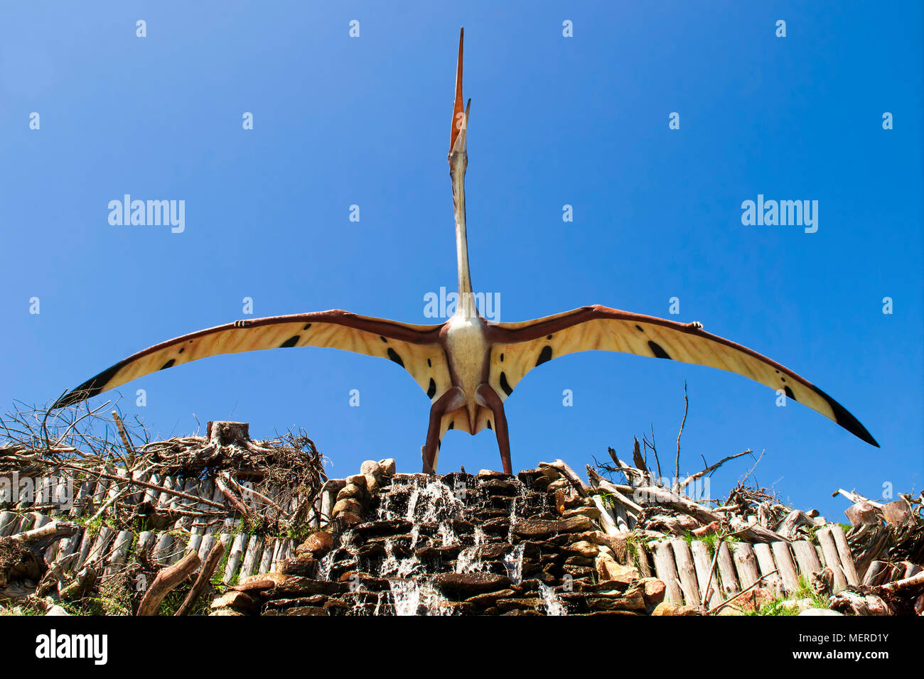 Flying Dino Stockfotos Flying Dino Bilder Alamy