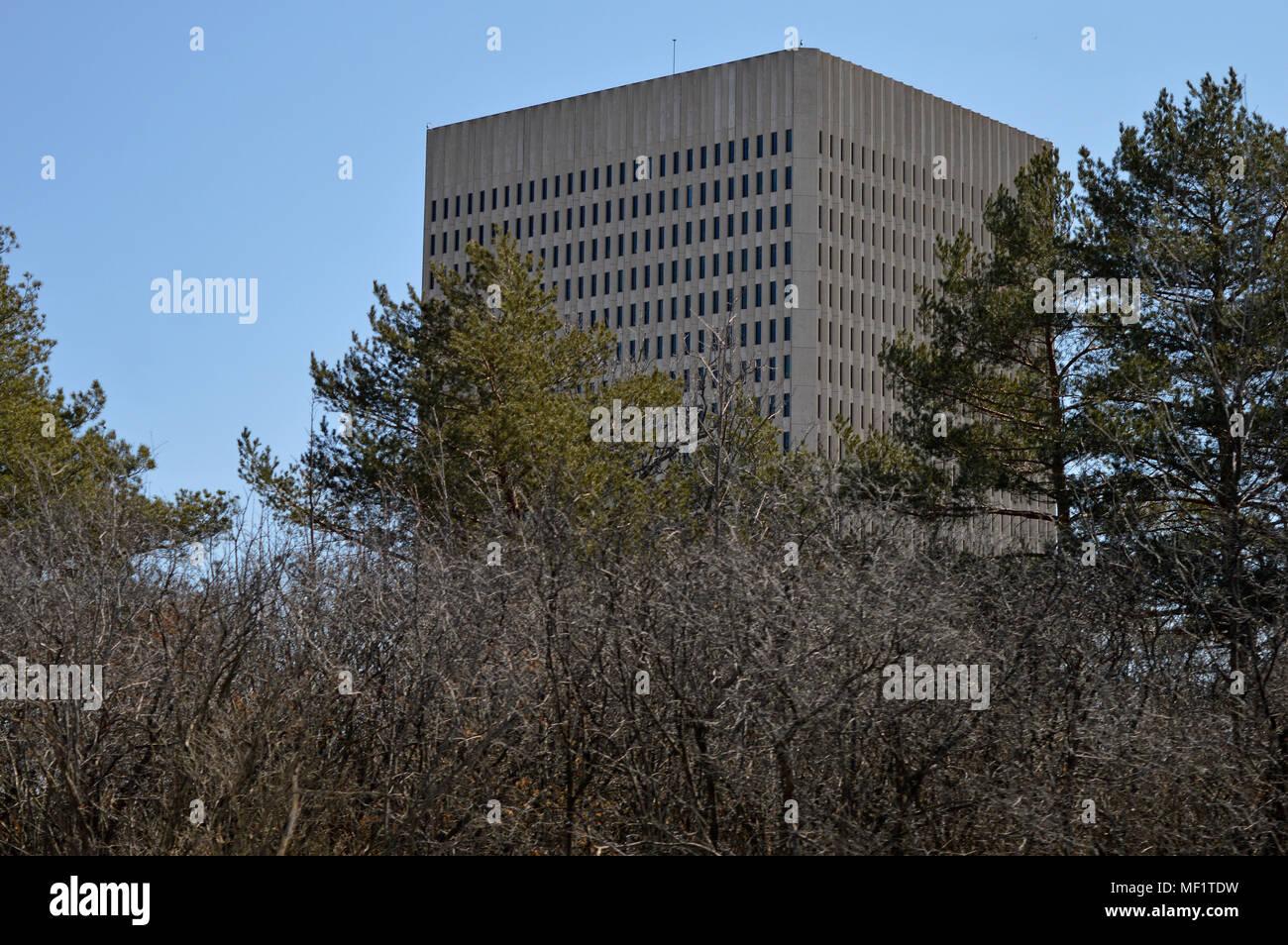 Ein Büro Turm erhebt sich über die Bäume und die Sträucher Stockfoto