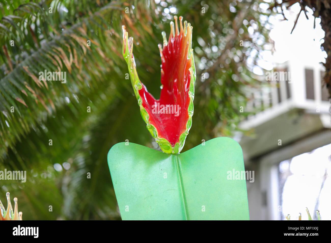 Schöner Größer Als Das Leben Buntes Glas Venus Trap Blumen Fliegen