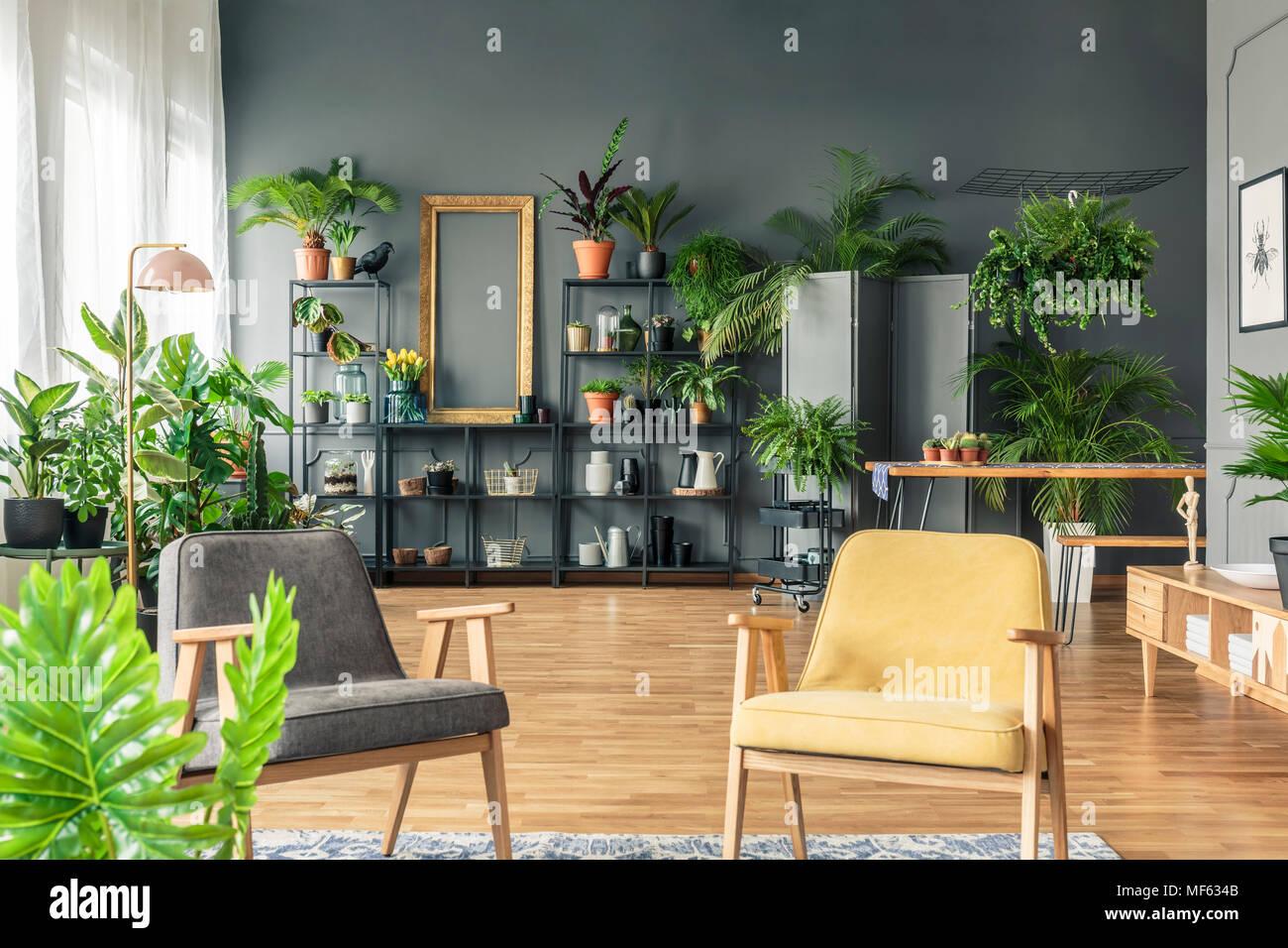 Grauen Und Gelben Sessel Im Wohnzimmer Einrichtung Mit Pflanzen Auf