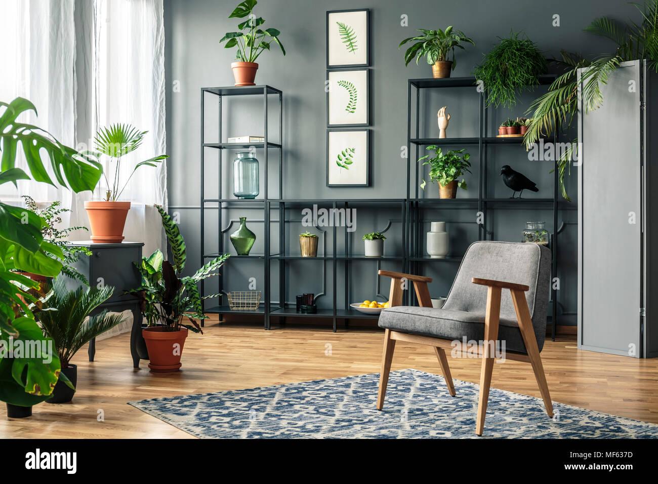 Elegante, Grau Wohnzimmer Einrichtung Mit Pflanzen Auf Metallregale Gegen  Dunkle Wand Stehend Mit Molding Hinter Einem Vintage Sessel