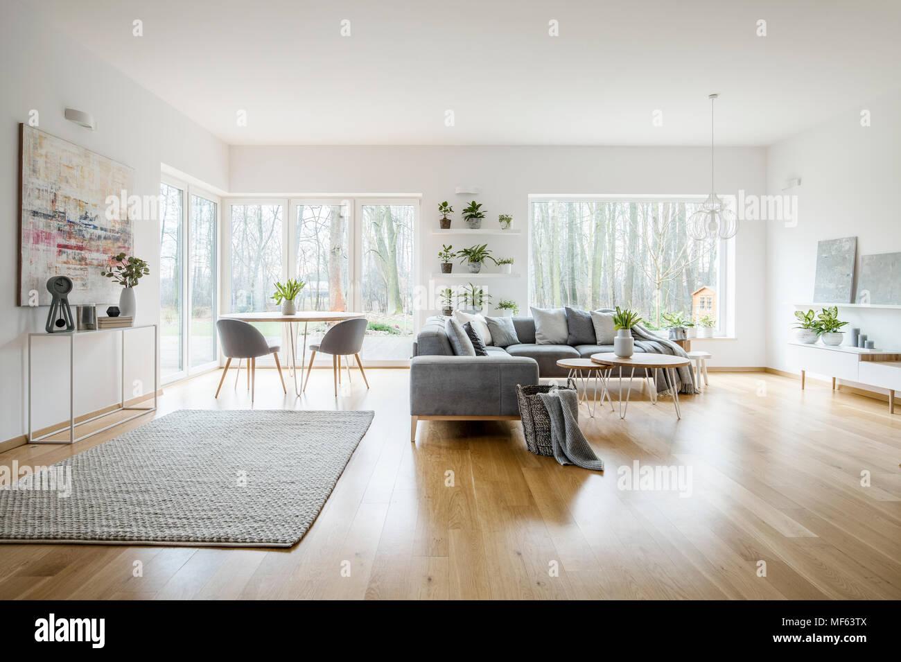 Weiss Elegantes Wohnzimmer Interieur Mit Windows Grau Ecksofa Und