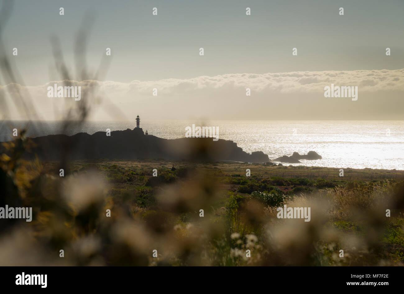 Spanien, Kanarische Inseln, Teneriffa, Punta de Teno, Leuchtturm an der Küste Stockbild