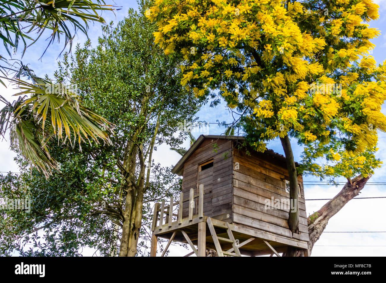 Baumhaus Fur Kinder Im Garten Stockfoto Bild 181508751 Alamy