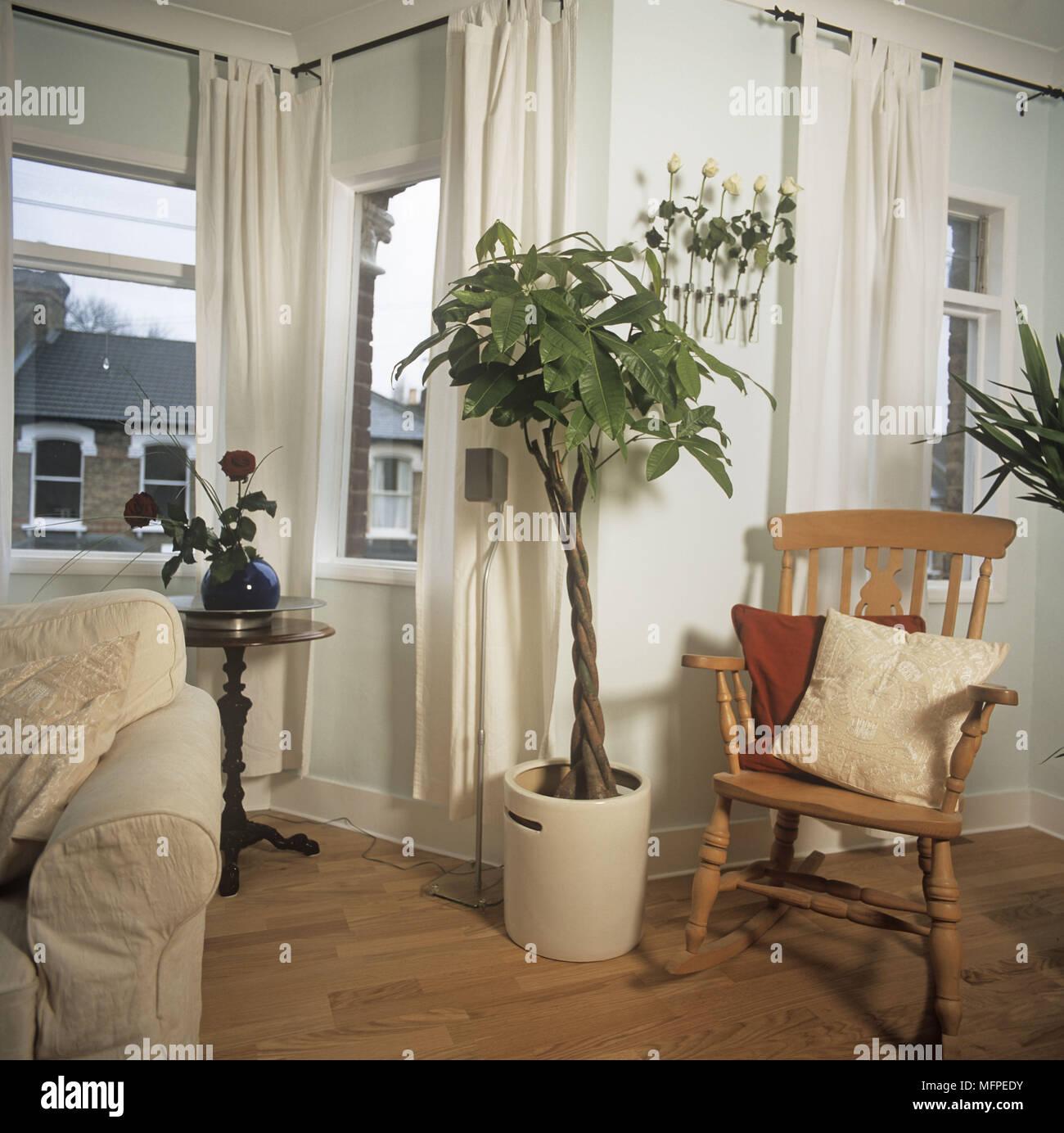 Detail der Schaukelstuhl und kleiner Baum in einem modernen ...