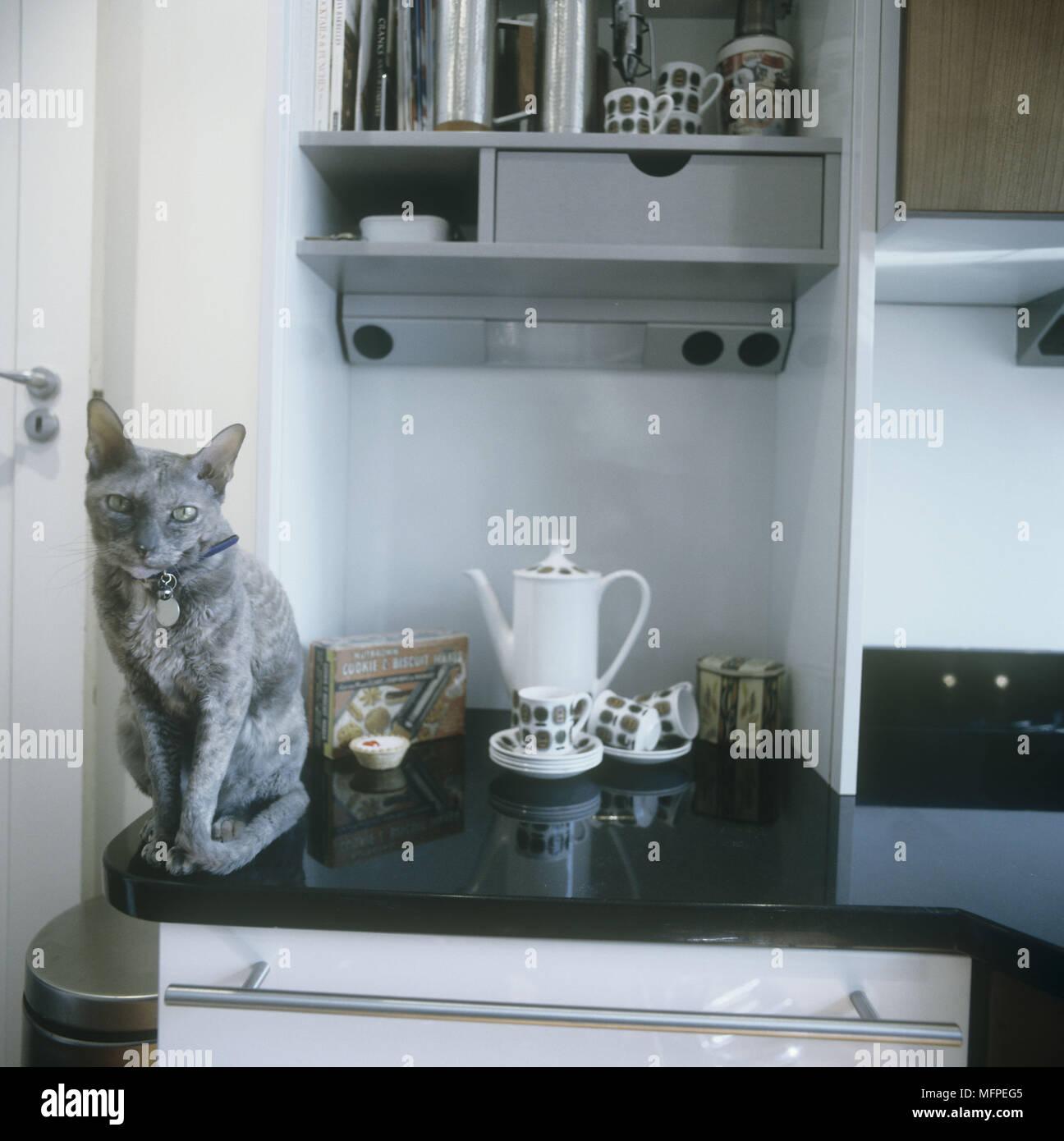 Ziemlich 50 S Retro Küchenschränke Fotos - Küchenschrank Ideen ...