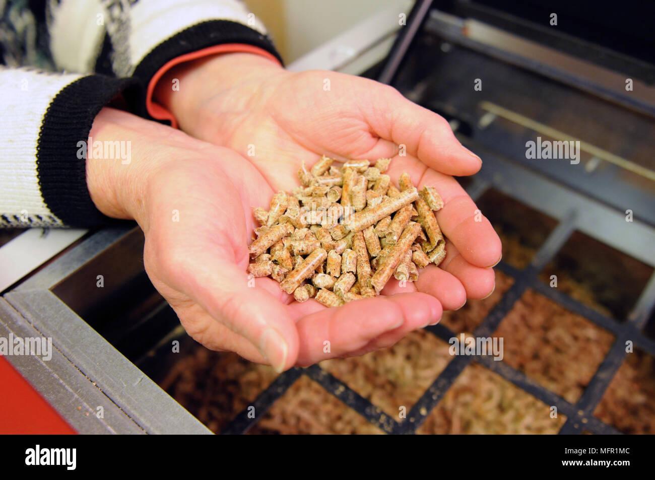 Wood Boiler Stockfotos & Wood Boiler Bilder - Alamy