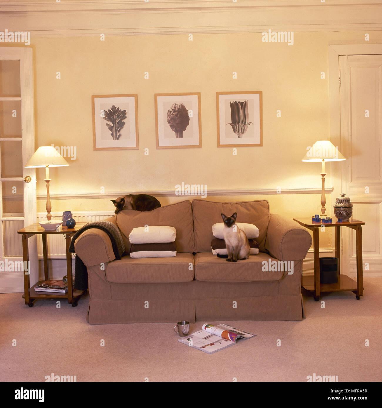 Wohnzimmer blassgelben Wänden bequemes Sofa paar Leuchten ...
