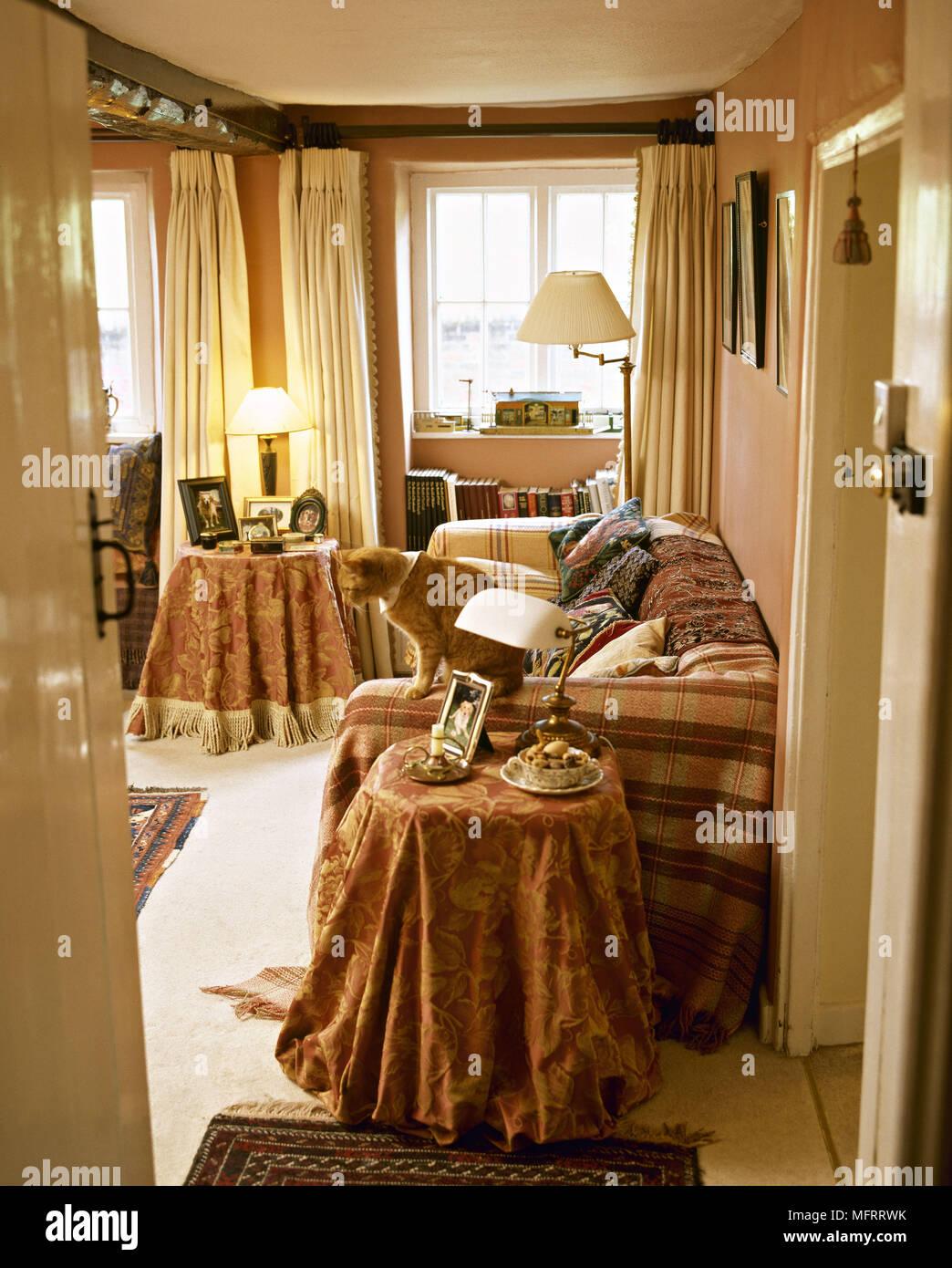 Katze Im Wohnzimmer Mit Fenster Mit Vorhängen Mit Stoff Bezogenen