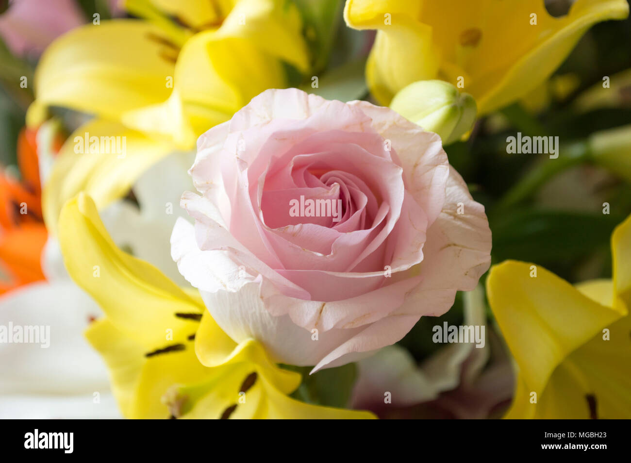 Die Frischen Blumenstrauss Mit Verschiedenen Arten Von Rosen Und