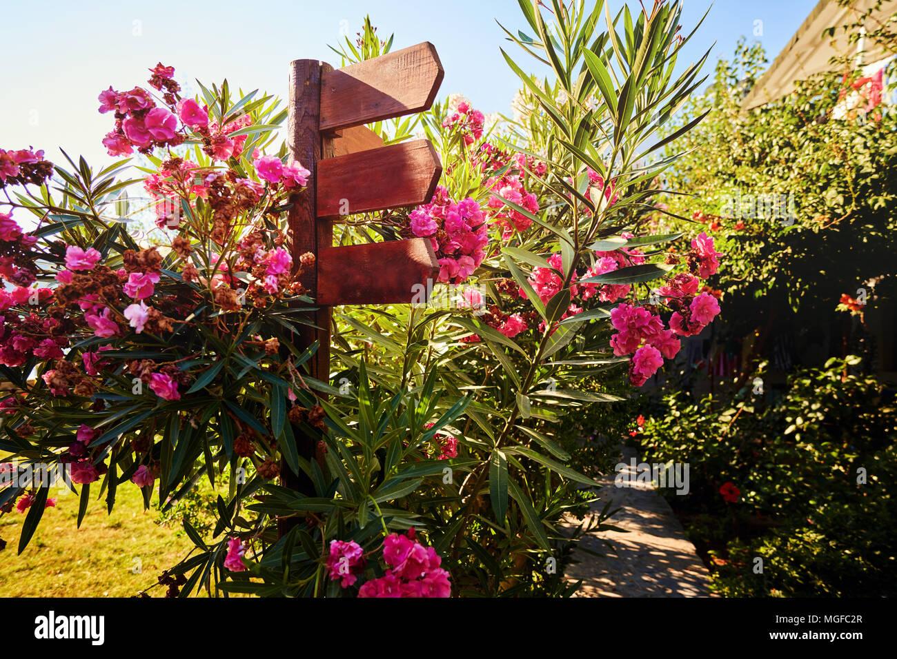 Holz Wegweiser Surruonded Mit Bunten Blumen Im Garten An Einem
