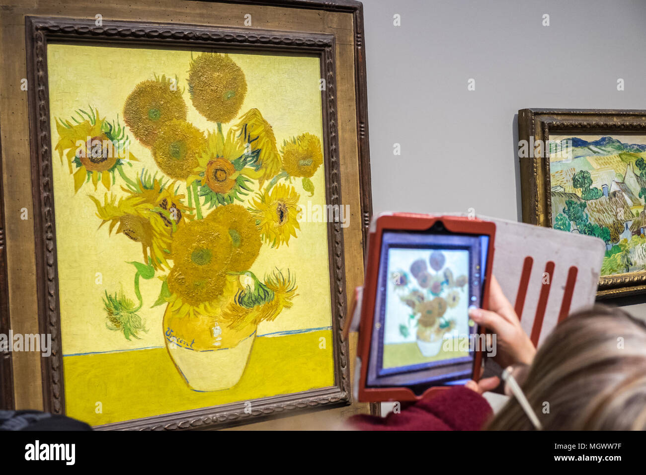Sunflowers Vincent Van Gogh Stockfotos Sunflowers Vincent Van Gogh