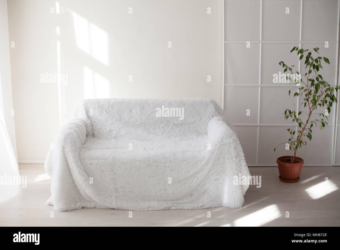 Weiß Sofa und Grüne Zimmerpflanzen im Zimmer Stockfoto, Bild ...