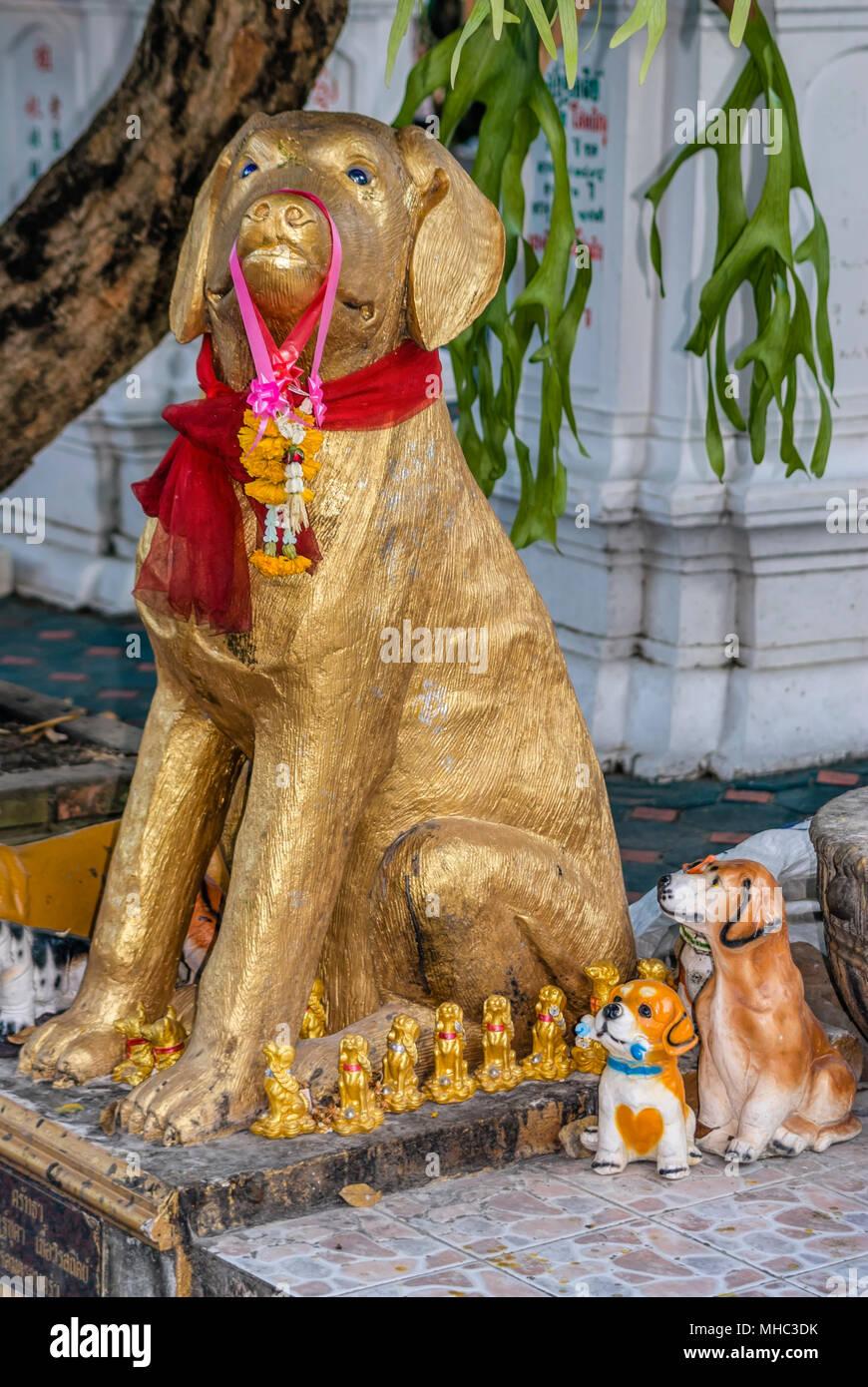 Hund Skulpturen im Wat ketkaram buddhistischen Tempel in Chiang Mai, Nord Thailand. Wat Ketkaram ist ein wichtiger Tempel für alle Leute, die in die Hund fallen Stockbild
