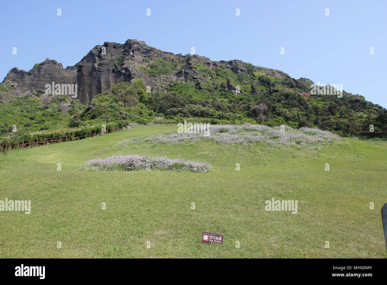 Insel Jeju, Korea Suoth Stockbild
