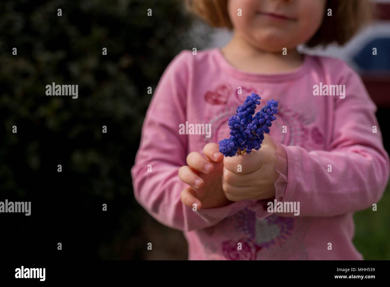 Ein kleines Mädchen hält einen Strauß lila Hyazinthen Blumen im Frühjahr. Stockbild