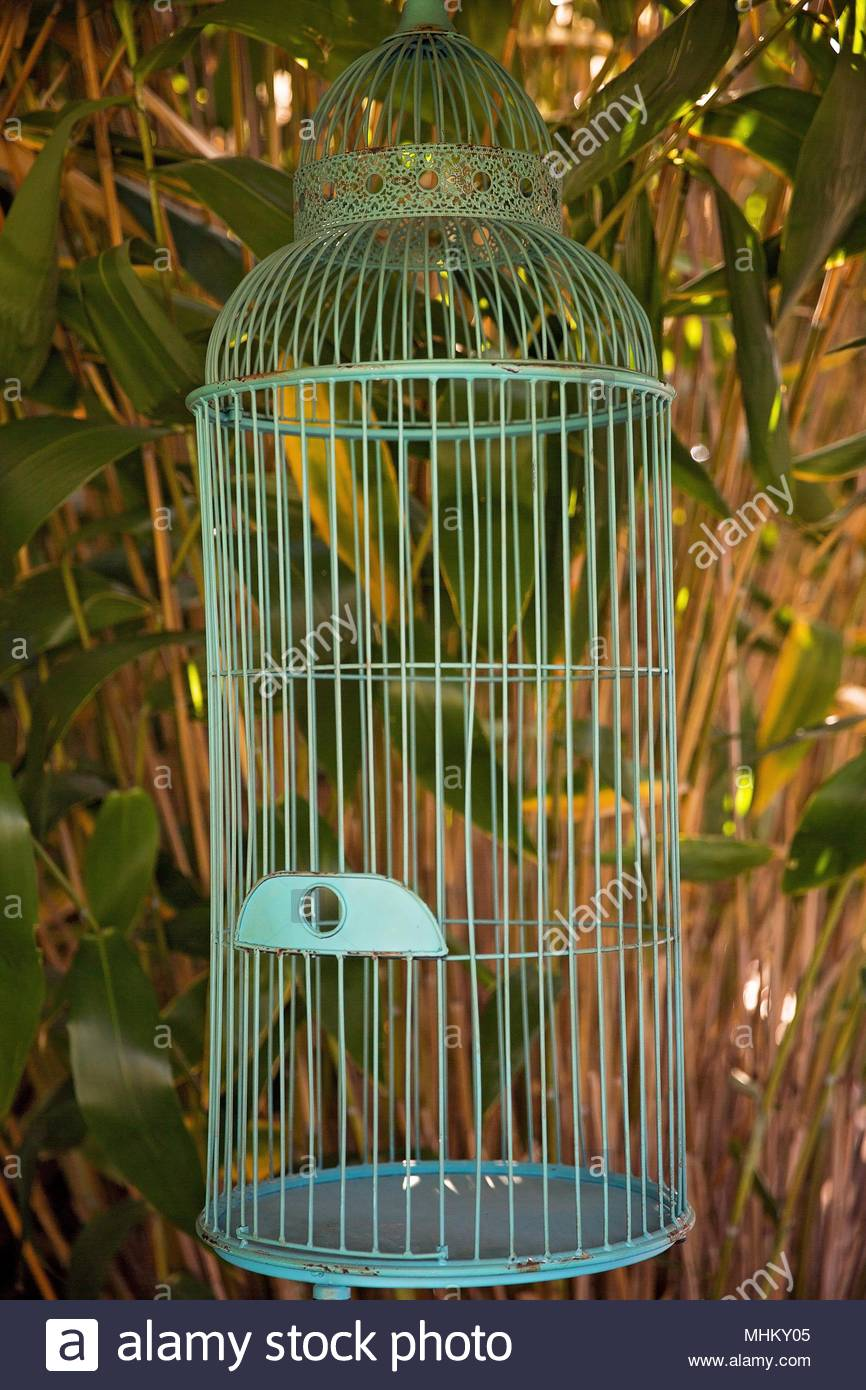 Gruner Vogel Kafig Als Dekoration Fur Eine Hochzeit Im Freien
