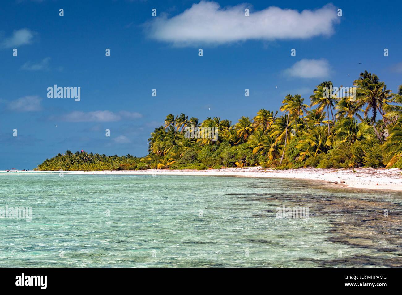 Aitutaki Island Coconut Tree auf Polynesien Strand wunderbare Lagune in Cook Inseln Stockbild