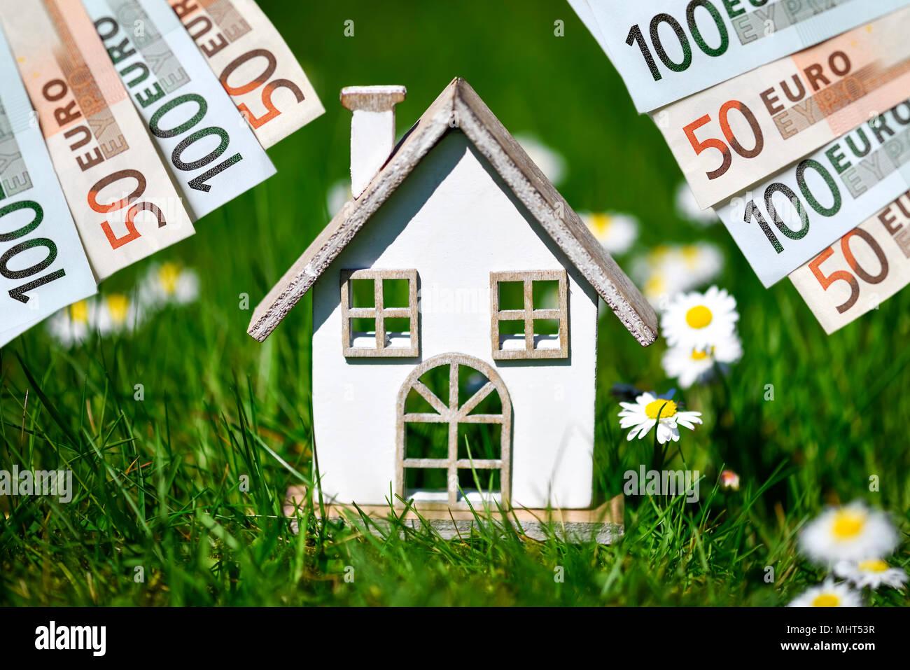 Miniaturhaus im Gras und Euro-banknoten Stockbild