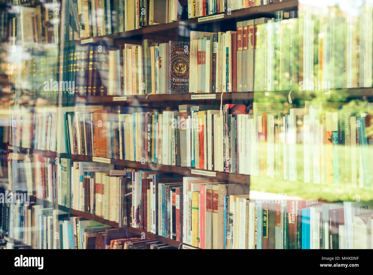 NOVI SAD, Serbien - 2. Mai 2018: Verschiedene Bücher auf dem Regal in der kleinen Bibliothek bei Bistrica in Novi Sad, illustrative Editorial Stockbild
