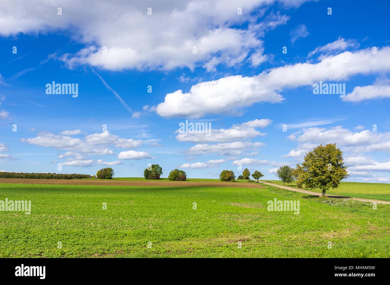 Einfache Landschaft im ländlichen Raum bei bewölktem blauen Sommerhimmel über die Schwäbische Alb, Württemberg, Deutschland. Einfache Landschaft unter blauem bewölktem Sommerhim Stockfoto
