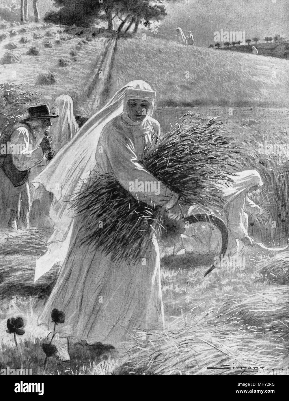 Franziskanerinnen der Ernte von Mais, Britany, Erster Weltkrieg, Frankreich Stockbild