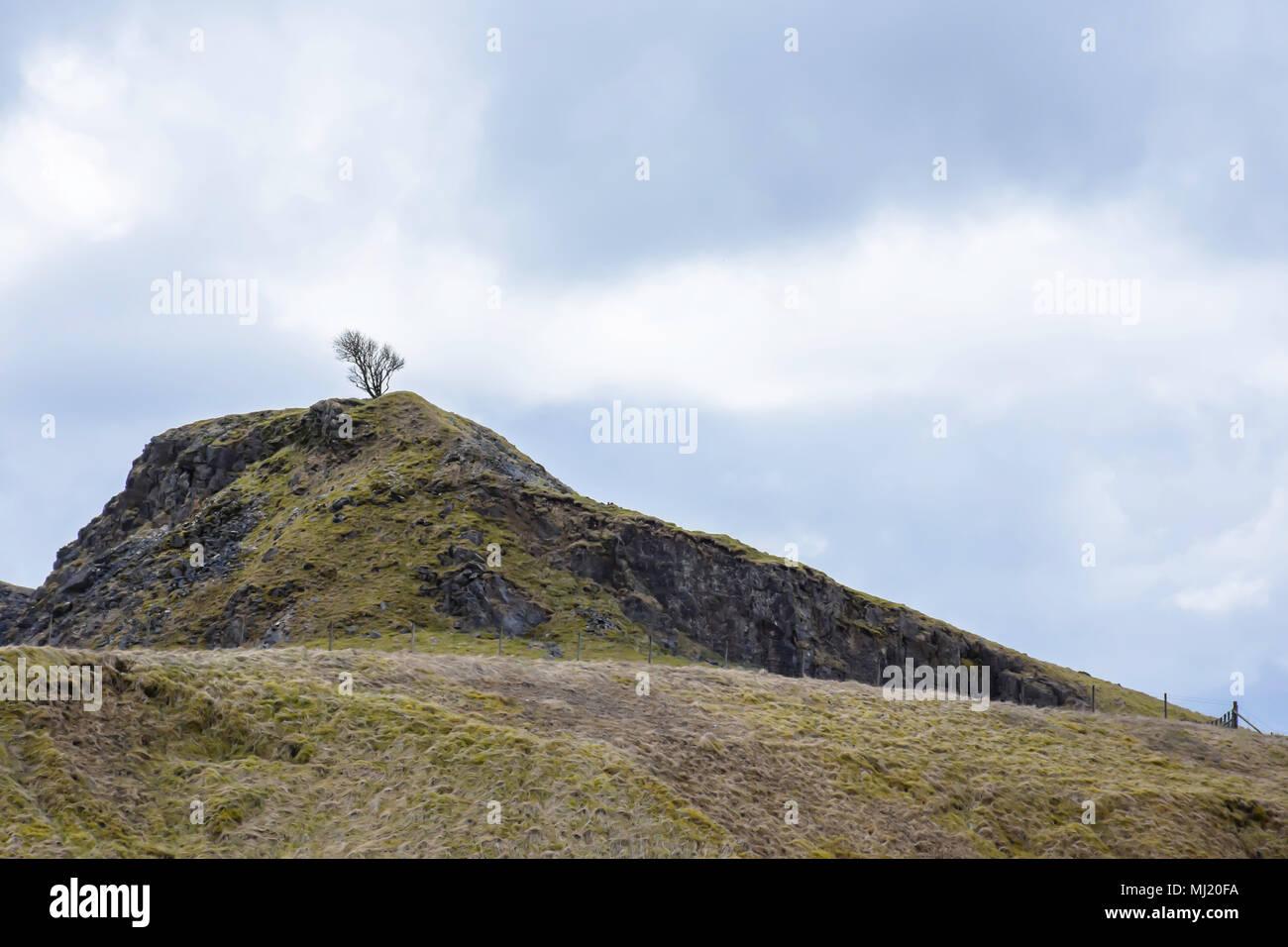Baum auf der felsigen Hügel und Blau, bewölkter Himmel. Nationalpark Peak District, Derbyshire Uk. Atemberaubende britische Landschaft Landschaft im Frühjahr. Stockfoto